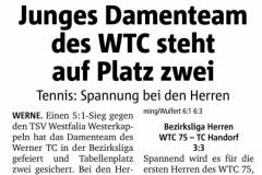 WTC Zeitungsartikel - 167 von 316